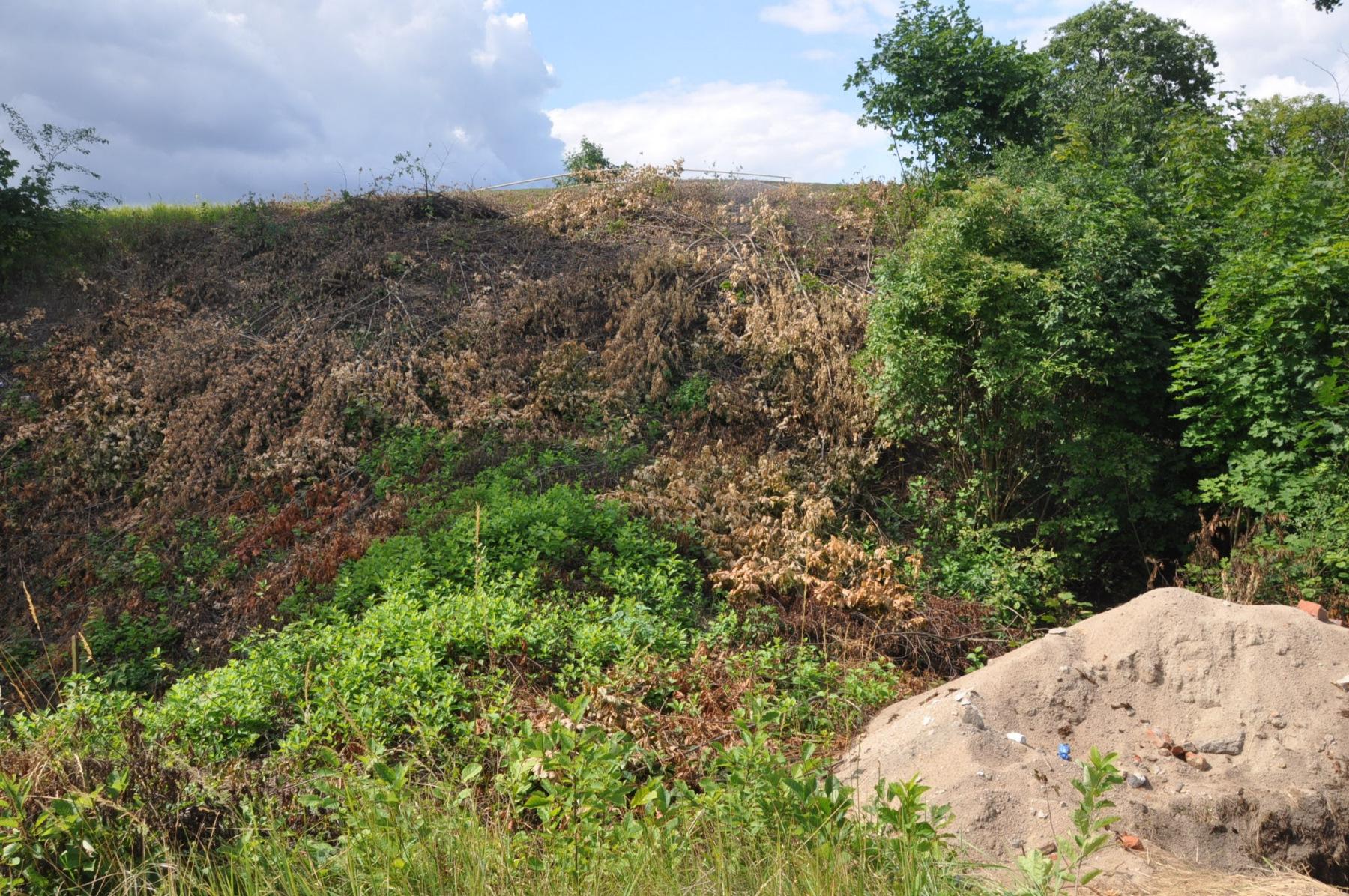 fort-IV-065